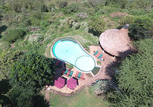 3 Days Lake Manyara National Park / Ngorongoro Lodge safari