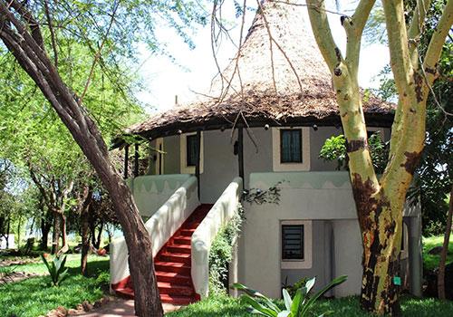 4 Days Arusha Lake Manyara National Park / Ngorongoro / Serengeti / Arusha Lodge safari