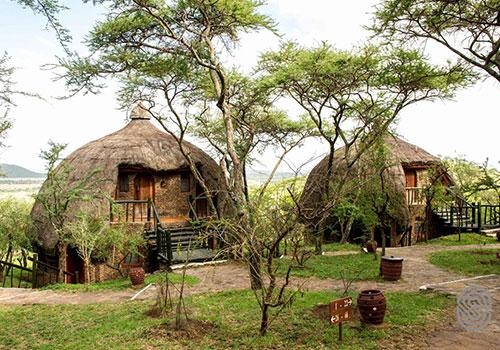 4 Days Arusha / Serengeti National Parks / Ngorongoro / Arusha Safari