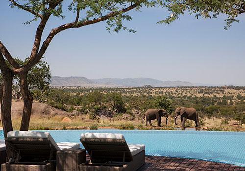 6 Days Arusha / Lake Manyara / Serengeti / Ngorongoro / Arusha Lodge Safari